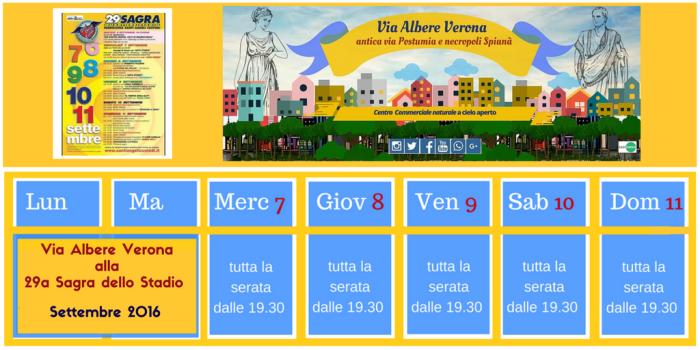 Via Albere Verona alla Sagra dello Stadio